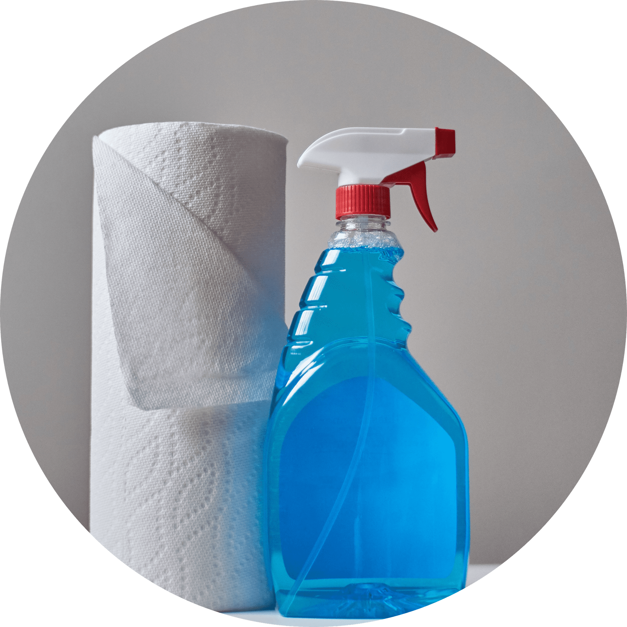Cleaning Products | IT Storeroom