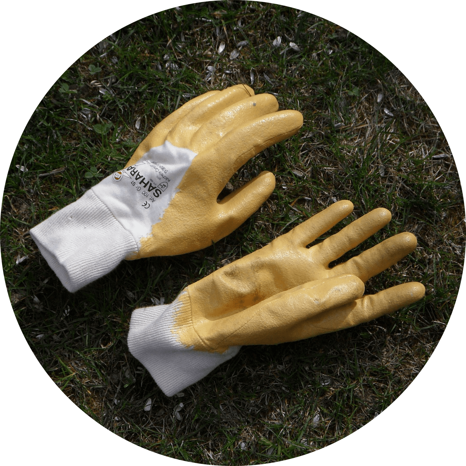 Gloves | IT Storeroom