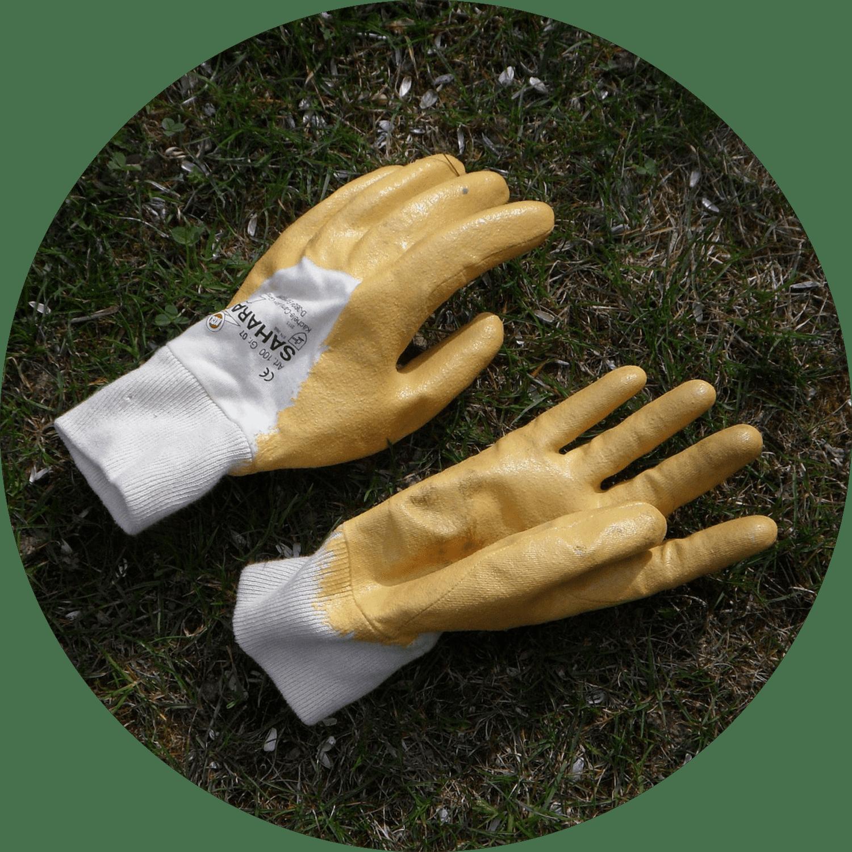 Gloves | IT Storeroom