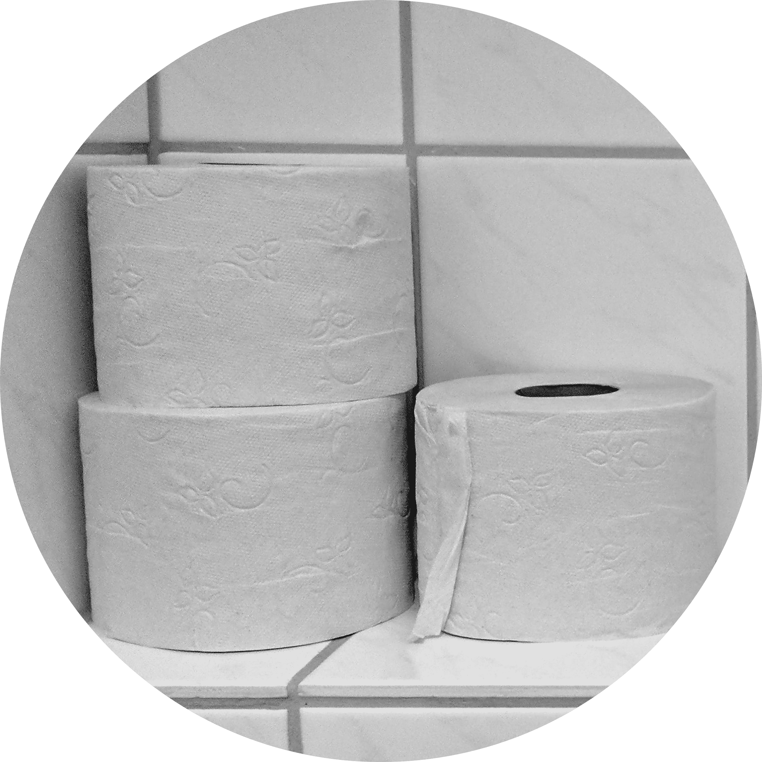 Toilet Roll | IT Storeroom